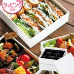 HAKOYA  たつみや  Tatsumiya  21.0角二段重  54907 重箱 大容量 おせち 運動会 行楽