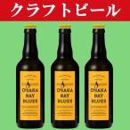 「大阪限定発売・クラフトビール・地ビール!」 大阪ベイブルース(OSAKA BAY BLUES) クラフトビール  330ml瓶(1ケース/24本入り)(3)