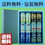 「送料無料・ギフト包装無料」 厳選クラフトビール6種類 飲み比べセット 350ml×各2本ずつ(1ケース/合計12本入り)