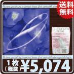 HOYA プレノトーリック【乱視用】(マリンブルートーリック) ×1枚(処方箋不要)