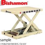 ビシャモン(スギヤス) 電動ネジ駆動式リフト バリオスクリュー1段式 XS030508-B 最大積載能力:300kg [配送制限商品]