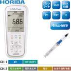 HORIBA(堀場製作所) ポータブル型pHメータ D-74S/プラスチックボディpH電極セット