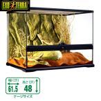 (爬虫類 用品)GEX グラステラリウム 6045 爬虫類 飼育 ケージ ガラスケージ