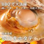 お家でBBQ/ 業務用殻付きホタテ/4キロ(約60枚)/冷凍/青森県産/コロナ支援商品