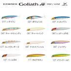 シマノ エクスセンス ゴリアテハイ XAR-C 125F XL-112Q (シーバス ルアー)