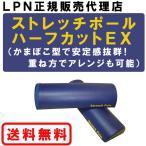 ストレッチポール・ハーフカットEX(2本組み)ネイビー【正規販売代理店】[LPN]