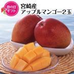 【 CGC 母の日ギフト 】 宮崎産アップルマンゴー 【 送料無料 】F5044