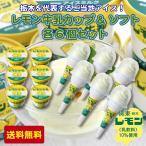 レモン牛乳アイス カップ&ソフト各6個セット  [栃木県産品宇都宮市] FN021