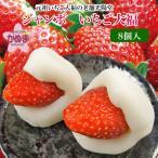 ジャンボいちご大福 8個入   光陽堂  栃木県産品 鹿沼市 FN0ES