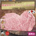 与一和牛 特選厚切サーロインステーキA5等級 600g×1枚 栃木県産品 大田原市 FN053