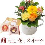 花とスイーツのセット ガーベラカップアレンジとどうぶつドーナツ2個入りギフトセット 誕生日 記念日 お祝い花 即日発送