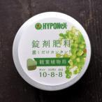 植物成長調整剤 錠剤肥料 ハイポネックス 錠剤 約70錠 かわいいハート型錠剤 観葉植物にプラス商品