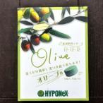 植物成長調整剤 オリーブ肥料 観葉植物にプラス商品 オリーブの肥料 60錠 箱入り タイプ