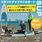 スタンドアップパドルボード 12'6 パドルボードセット インフレータブル サップ SUP マリンスポーツ カヌー 海 夏 ad174