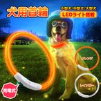 首輪 犬用 光る LEDライト 夜 散歩 長さ調整可 常時点灯 点滅 USB充電 ペット 35cm 50cm 70cm 小型犬 中型犬 大型犬 安全 pt032