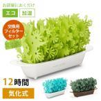 「ミスティガーデン 2nd」 交換用フィルター 自然気化式小型加湿器/ミクニ(mikuni)/メール便無料/一部在庫有