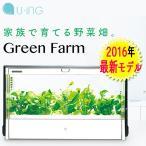 グリーン ファーム/ユーイング Green Farm 水耕栽培器(UING)/取寄せ5日