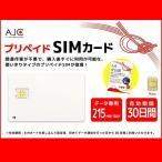 AJC全日通 データ専用 オリジナル SIM Card 1日 215MB