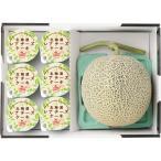 選べる北海道ギフト 北海道メロン+北海道レアチーズケーキ《お中元ギフト 御礼 内祝い粗品 快気祝い 御祝 お返し》