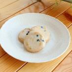 16.3cmお洒落なレリーフプレート    洋食器 白い食器 お皿 中皿 アウトレット 日本製