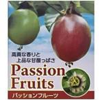 パッションフルーツ ポット苗 夏は涼しく秋は美味しく!!