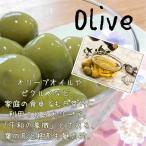 選べるオリーブ 観賞樹 オリーブ油 ピクルス 10.5cmポット