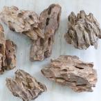 資 形おまかせ 気孔石 M 約13〜22cm