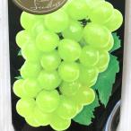 ブドウ ハニーシードレス ぶどう苗 葡萄 果樹苗 10.5cmポット