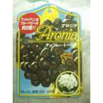 アロニア・チョコレートベリー 実付き果樹 苗木 3株植え