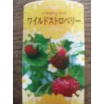 イチゴ苗 ワイルドストロベリー ポット苗
