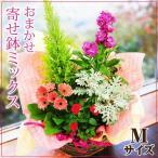 鉢植え 花 ギフト おまかせ寄せ鉢ミックス ギフト 翌日配送