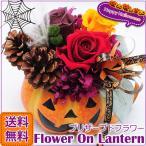 ハロウィン フラワー・オン・ランタン プリザーブドフラワー ハロウィーン パンプキン かぼちゃ Halloween ギフト プレゼント