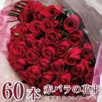 誕生日プレゼント 女性 バラの花束 赤いバラ 60本 還暦祝い 卒業 卒園 花束 バラの花束 還暦祝い 花束 誕生日 記念日 送別 赤いバラ花束 赤いバラ60本の花束