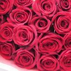花束 赤薔薇25本 デフェネットリーレッド (Definitely Red)