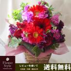 花 【送料無料】ギフト/ガーベラ赤/アレンジメント/フラワー/誕生日