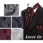 アスコットタイ ポケットチーフ 2点セット ASCOT-Cset