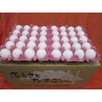 サイズ不揃い エフマルシェおたまごちゃん 120個入り|0019:卵