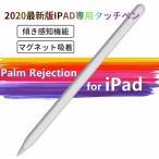 タッチペン iPad デジタルペンシル 最新 極細 高感度 パームリジェクション機能 2018年以降iPad対応 タッチペン iPad Air 3/iPad mini 5/iPad 6/iPad Pro 3など