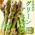 蘆筍 - 北海道雪どけグリーンアスパラガス(約750g、Lまたは2Lサイズ)