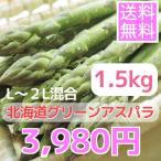 蘆筍 - 露地栽培北海道グリーンアスパラガス(1.5kg、L~2L混合)