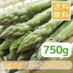 露地栽培北海道グリーンアスパラガス(750g)※7月以降は夏アスパラとなる場合がございます