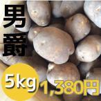 北海道産じゃがいも男爵(5kg)