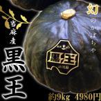 北海道当麻産かぼちゃ「黒王」 (4〜7玉、約9kg)