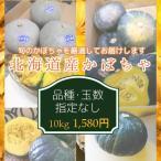 北海道産かぼちゃ (約10kg、品種指定なし)※現在1980円/10kg