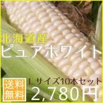 北海道とうもろこしピュアホワイト(10本セット)