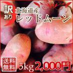 訳あり北海道産レッドムーン(5kg)