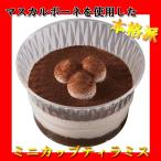 デザートティラミス (23g×10個入り) (冷凍) 本格派 マスカルポーネ・ココアスポンジ・ムースの3層