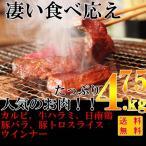 ショッピングバーベキュー 焼肉 バーベキュー(BBQ) 6点セット(冷凍) 牛カルビ/牛ハラミ/日南鶏/豚バラ/豚トロ/ウインナー 合計 4.75kg