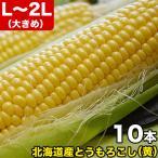 とうもろこし トウモロコシ 北海道産 超早割 ゴールドラッシュ L〜2L 10本で約4kg前後 冷蔵