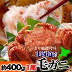 毛蟹 - お中元 御中元 北海道/オホーツク毛ガニ 大 約400〜500g 1尾 ボイル加熱済毛がに 冷凍
